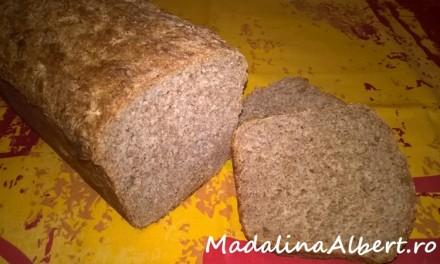 Pâine cu făină integrală