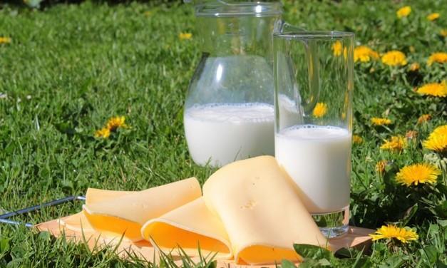 Laptele și produsele lactate