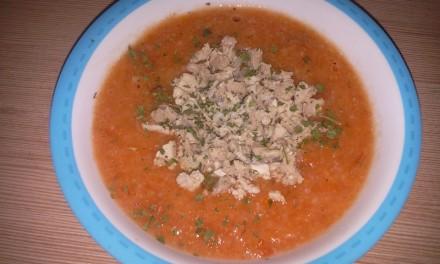 Supă de roșii cu piept de curcan