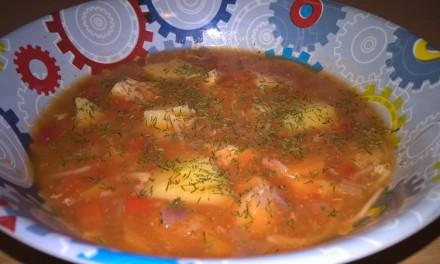 Ciorbă cu piept de pui și legume
