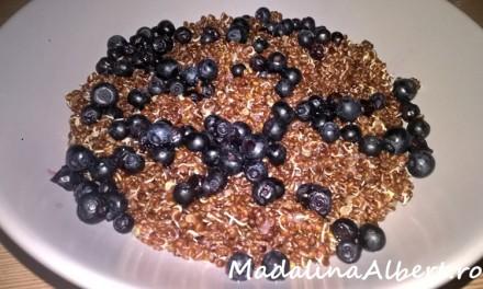 Quinoa roșie cu lapte de cocos și afine