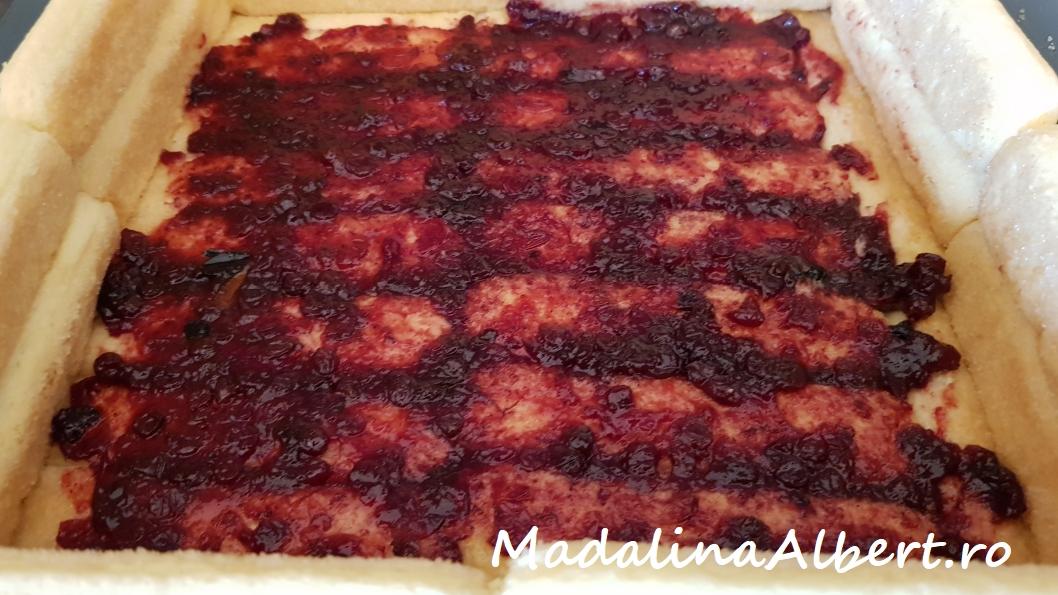 Tort cu cremă de vanilie și merișoare (fără coacere)